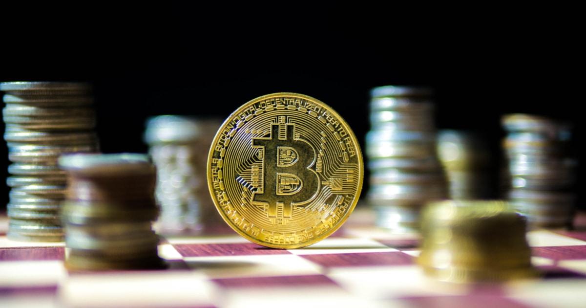 Bitcoin coronado como el 'activo más visto en los EE. UU.' El mes pasado, junto con las acciones de Tesla