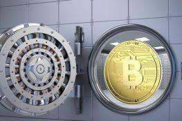 Bitcoin está emergiendo como el nuevo activo de refugio seguro de grado institucional en 2021, dice el CEO de MicroStrategy