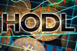 Hodling Bitcoin es la tendencia una vez más, según Santiment
