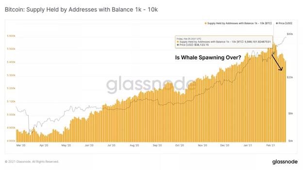 Razones por las que Bitcoin puede caer al nivel de $ 40,000