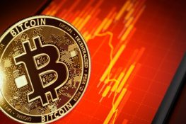 Las acciones de Tesla se desploman a medida que Bitcoin se hunde a $ 50,000