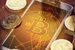 Bitcoin Network bate récord con 22,3 millones de direcciones BTC únicas en enero