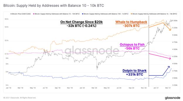 Por qué los comerciantes de Bitcoin están comprando continuamente la caída