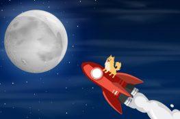 Robinhood se estrella mientras Dogecoin se eleva a un nuevo récord histórico