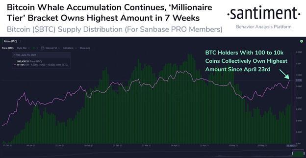 Las ballenas Bitcoin 'millonarias' acumulan 90.000 BTC adicionales