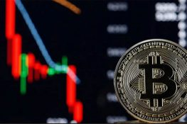 Cómo proteger su riqueza cuando Bitcoin sigue cayendo