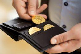 Manténgase alerta a la protección de Crypto Wallets frente a ataques informáticos cuánticos