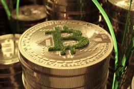 Bitcoin Bulls podría desencadenar una contracción corta basada en la ganancia intradía de $ 3K