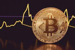 Bitcoin Leve volatilidad más baja que las otras criptomonedas líderes en 2021
