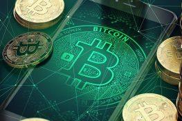 Los inversores de Bitcoin que poseen monedas de entre dos y cinco años poseen más del 22,9% del suministro de BTC