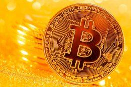 Los poseedores de Bitcoin a largo plazo se acumulan en gran medida a medida que las direcciones activas diarias se disparan