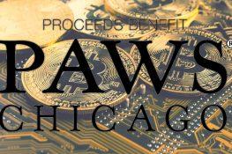 """La organización No-Kill Animal PAWS Chicago lanza """"Dogenaciones"""" y acepta donaciones de criptomonedas"""