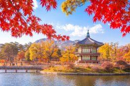 Corea del Sur podría tener que posponer los impuestos a las criptomonedas, declara un legislador